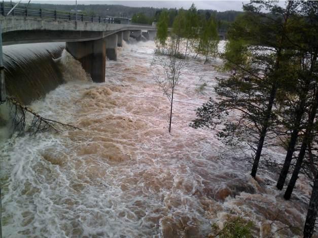 Finnskogen 23_26 Mai 2013 (1)