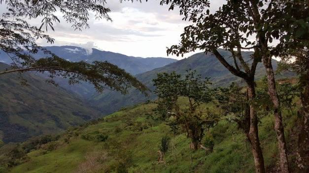 Fra Sincelejo til Valdivia