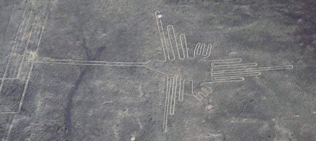 Nazca lines. The colibri