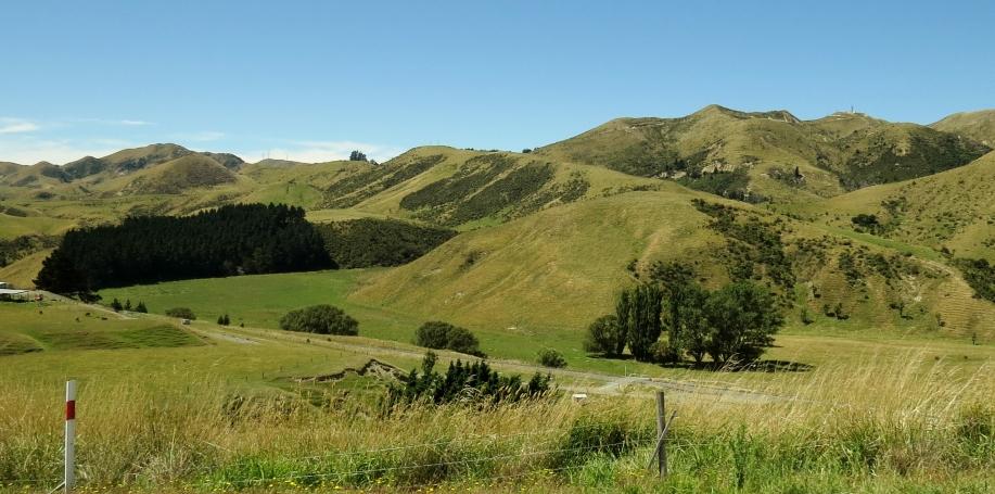State Highway 1 eller SH1, New Zealand