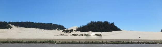 Oregon Dunes